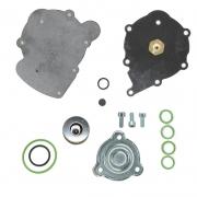 Ремкомплект редуктора Tomasetto Nordic //RGAT2085//