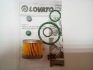 Ремкомплект редуктора Lovato RGJ тип А (674997000)